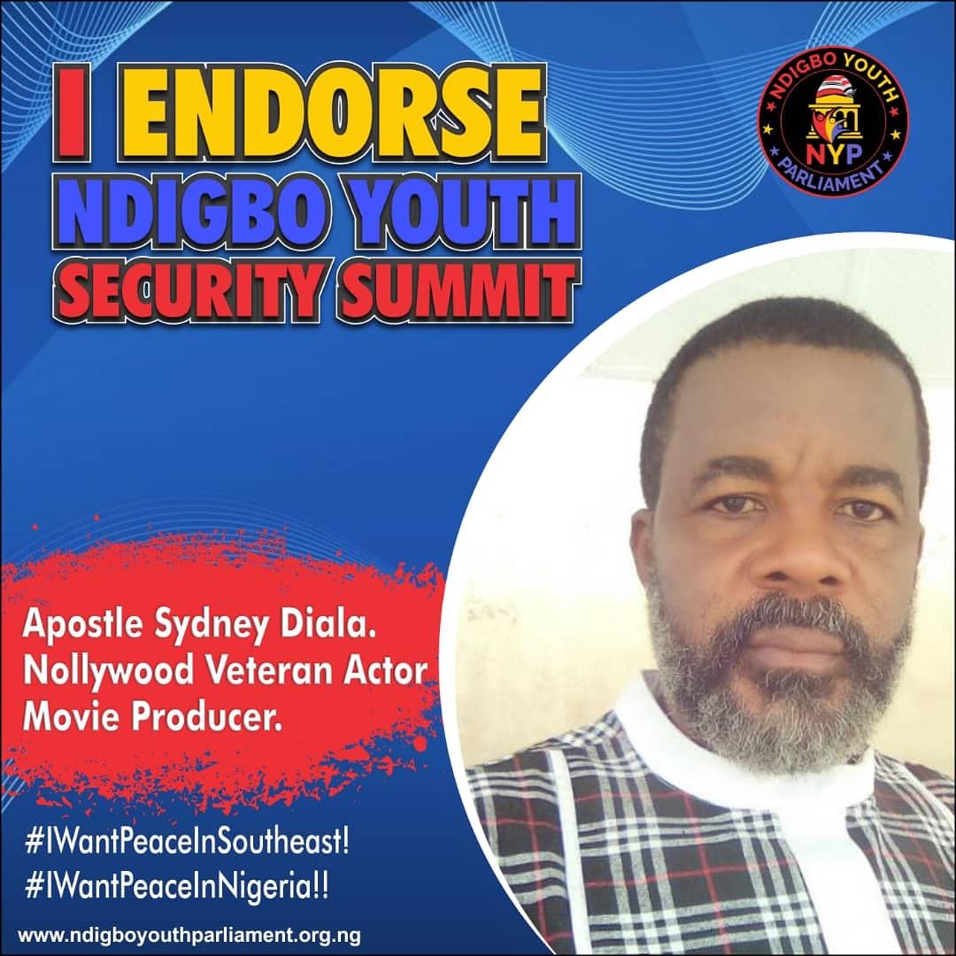 Ndigbo Youth Security Summit: Endorsements