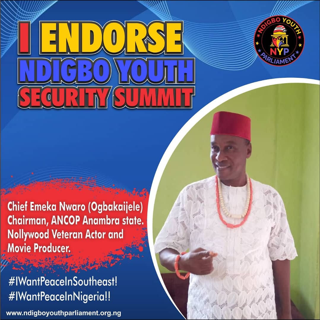 Ndigbo Youth Security Summit: More Endorsements